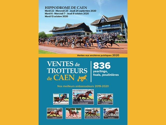 Un catalogue riche et varié